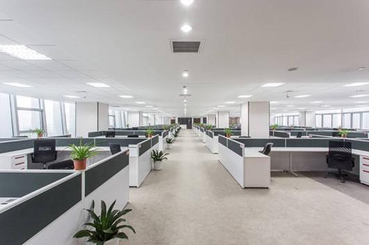 中型的办公区域